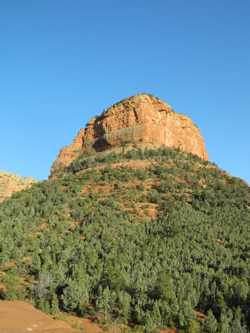 Tree Rock Hill