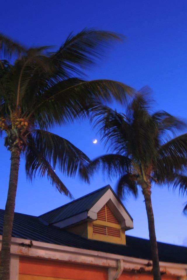 Bahamas (2).jpg