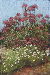 Schrader Nature Garden, Oglebay Park