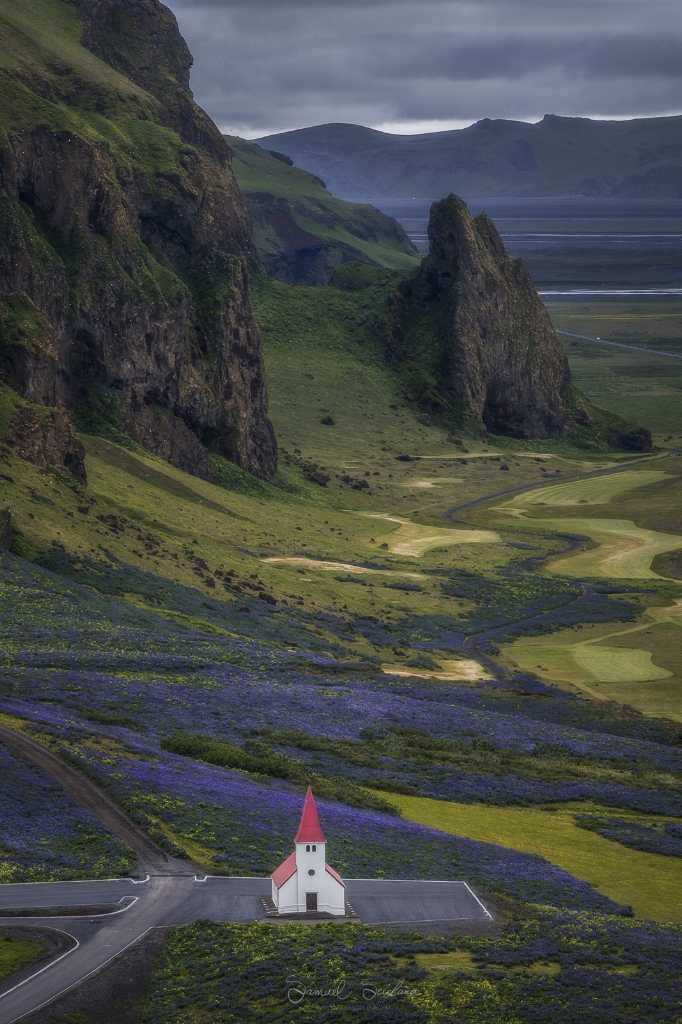 The famous little church in Vik with a backdrop of mountains and purple lupines.