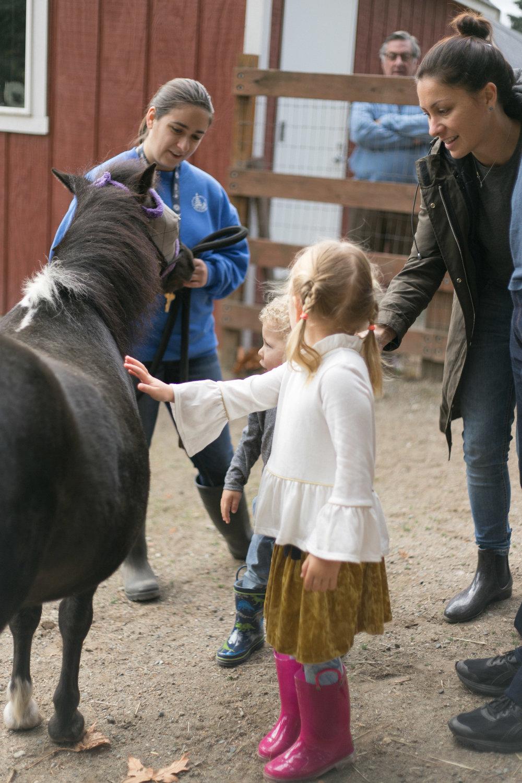 Rufus' Farm Birthday Party | Chelsea Macor Photography-4.jpg