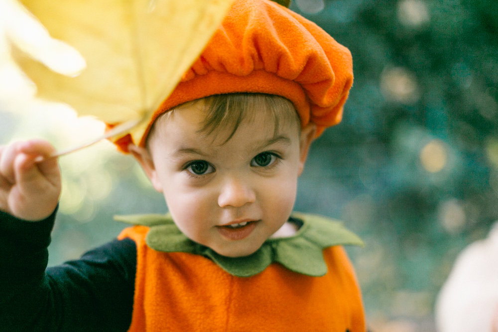 Halloween Kid Portraits at Home | Chelsea Macor Photography-7.jpg
