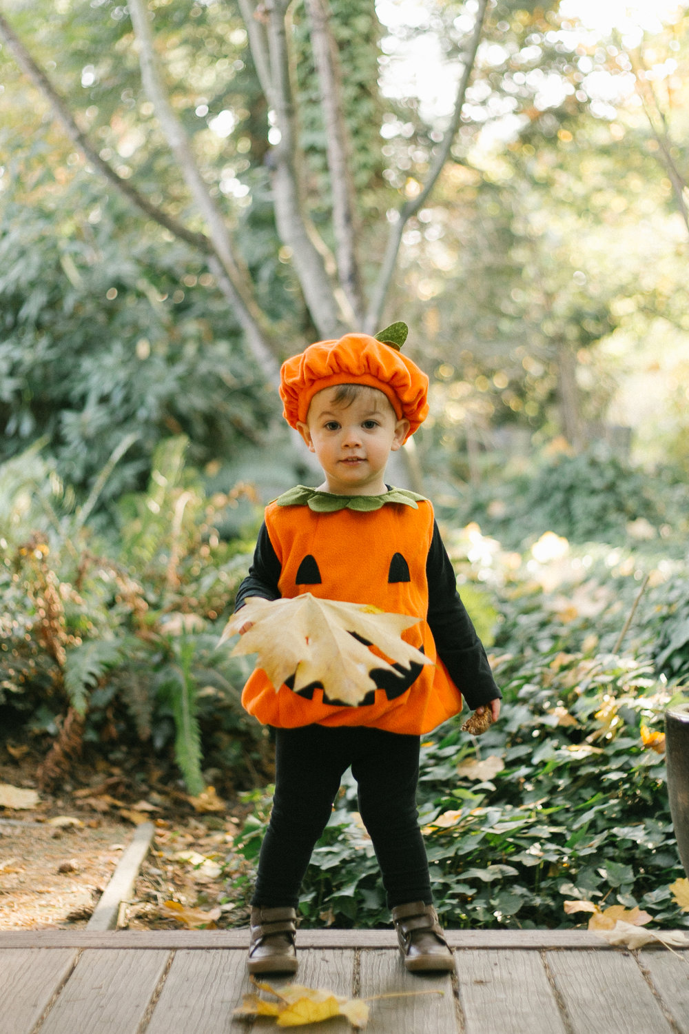 Halloween Kid Portraits at Home | Chelsea Macor Photography-9.jpg