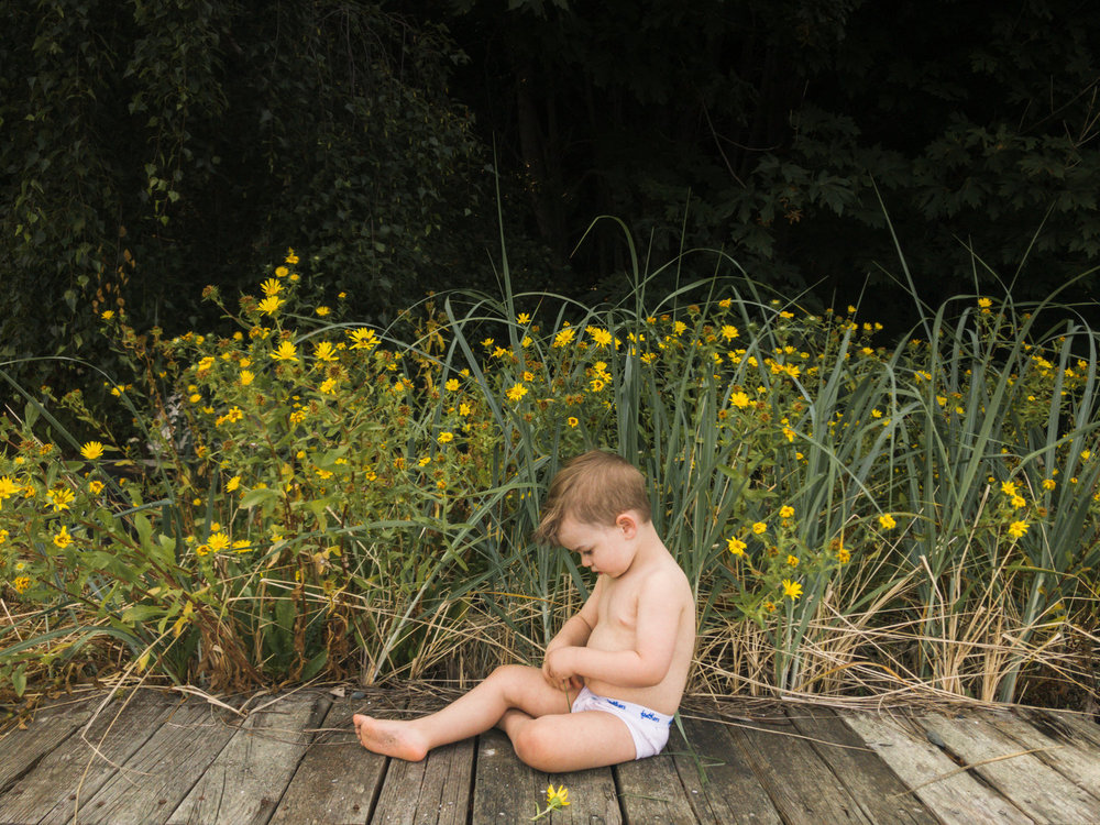 Rufus+in+the+Daisies,+Natural+Light+Photography+Seattle+Wa+Lifestyle+Family+and+Toddler+Children+Photos+by+Chelsea+Macor+Photograhy-3.jpg