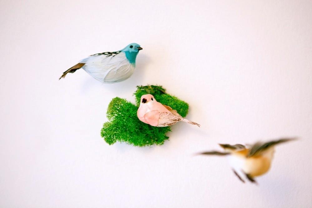 6BIRD_DETAIL_006 - Version 2.jpg