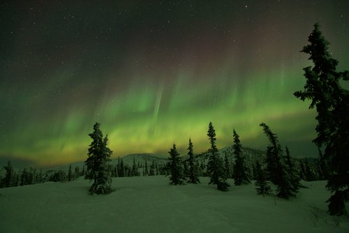 Northern Lights Tour - Price per person $200.00Approx. 12 hour tourAvailable Now - April 21