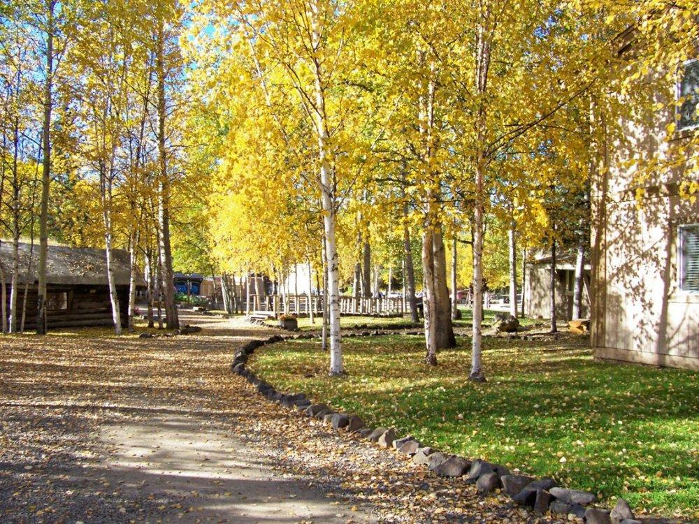 2resort autumn 3.jpg