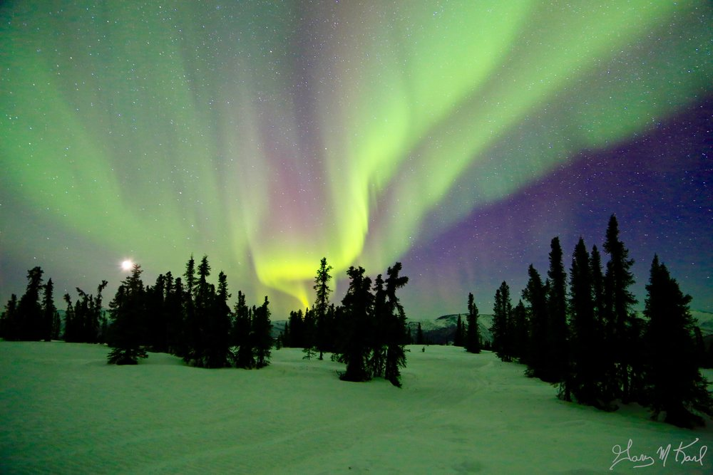 aurora above gk.jpeg