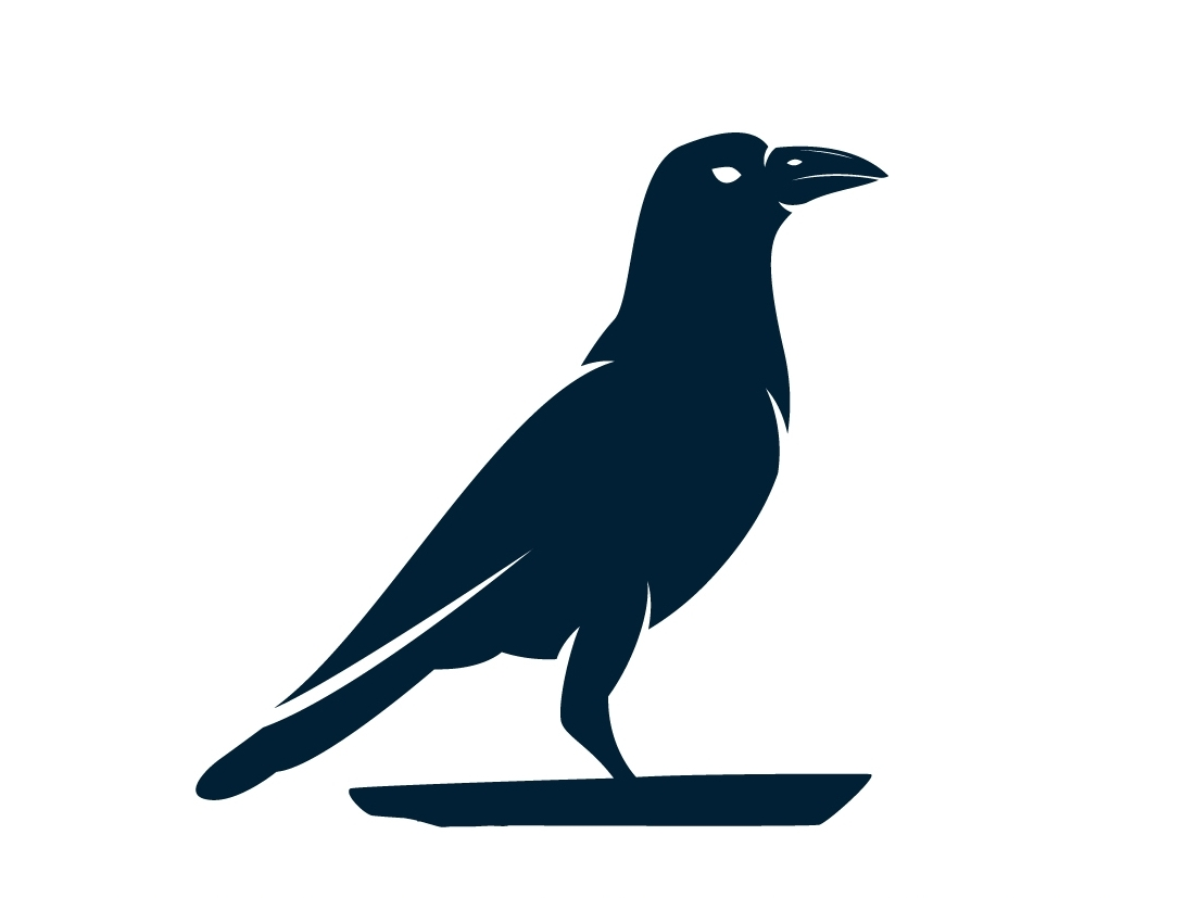 Blue Raven Consulting