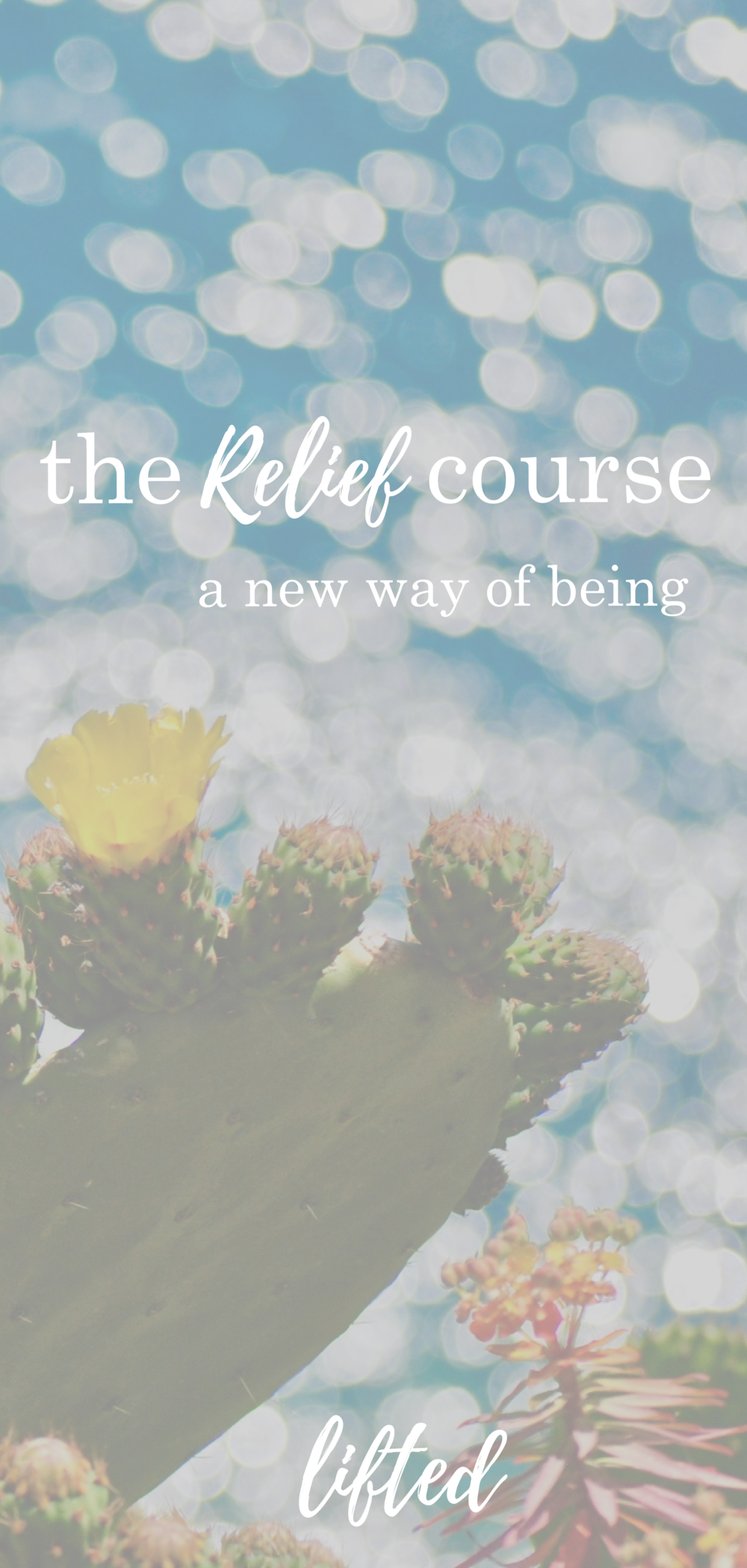 the relief course | lifted | Sylvia Hall