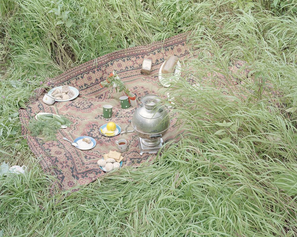 Svetlana Bailey,  picnic , 2016