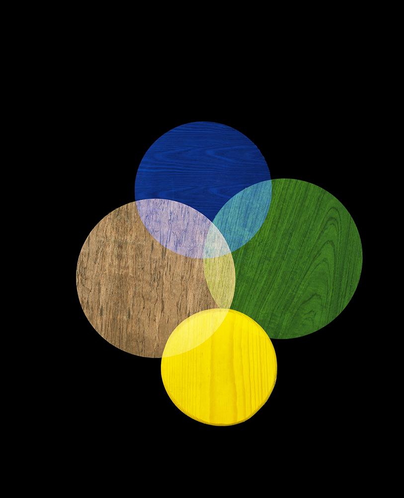 Alejandra Laviada,  Intersecting Circles,  2017