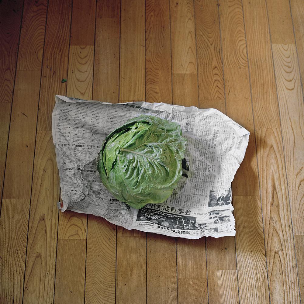Seiya Bowen,  Neighbor's Cabbage , 2015