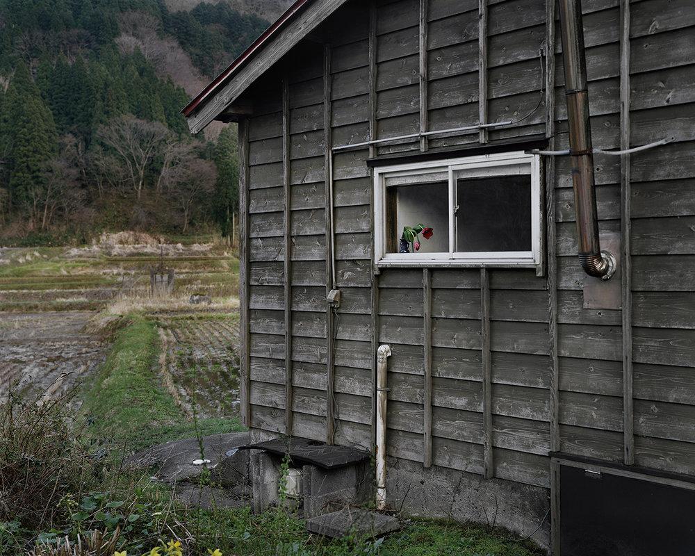 Seiya Bowen,  Window of My Grandparents' House , 2016
