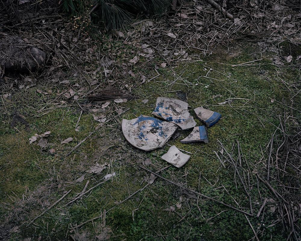 Seiya Bowen,  Broken Plate Near the Family House , 2016