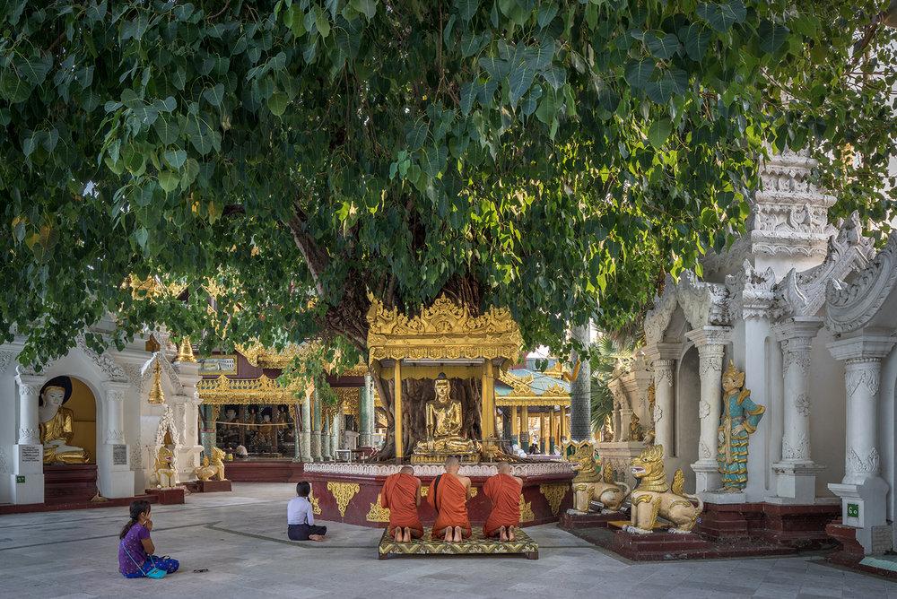 Eric West, Shwedegon, Burma