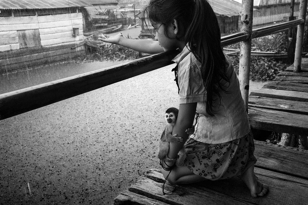 Calvin Chen,  Amazon Rain,  2015