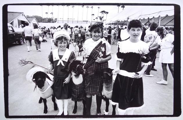 6112__630x500_girls-with-sheep.jpg