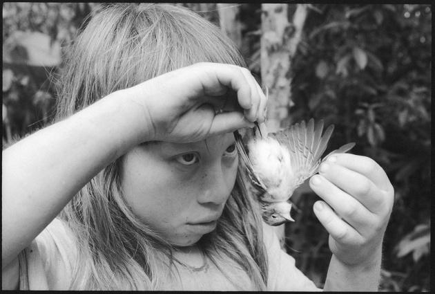 "$500 Carol Yarrow ""Boy with Bird"" PRINT CODE: YAR1"