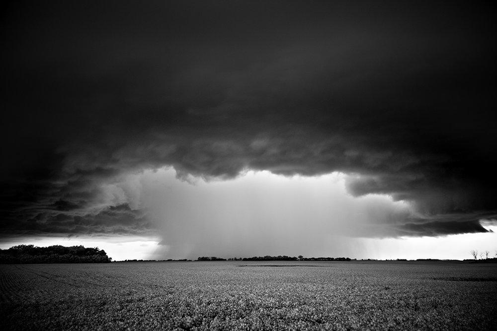 Mitch Dobrowner_Mushroom Cloud.jpg