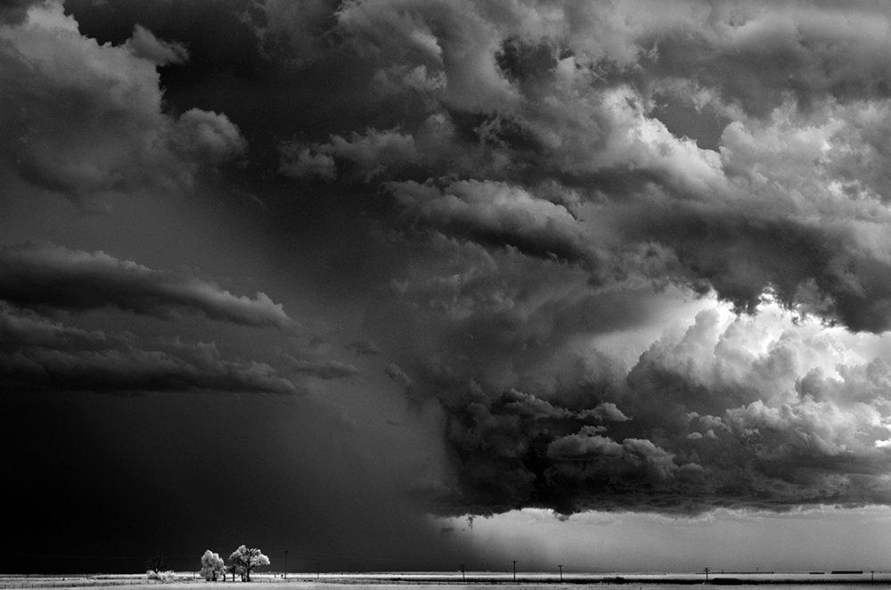 Mitch Dobrowner_Trees-Clouds.jpg