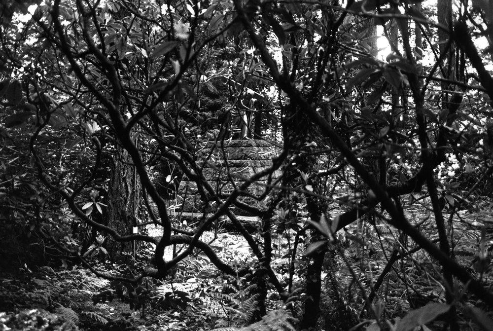 18_kendellen_1998_grotto.jpg