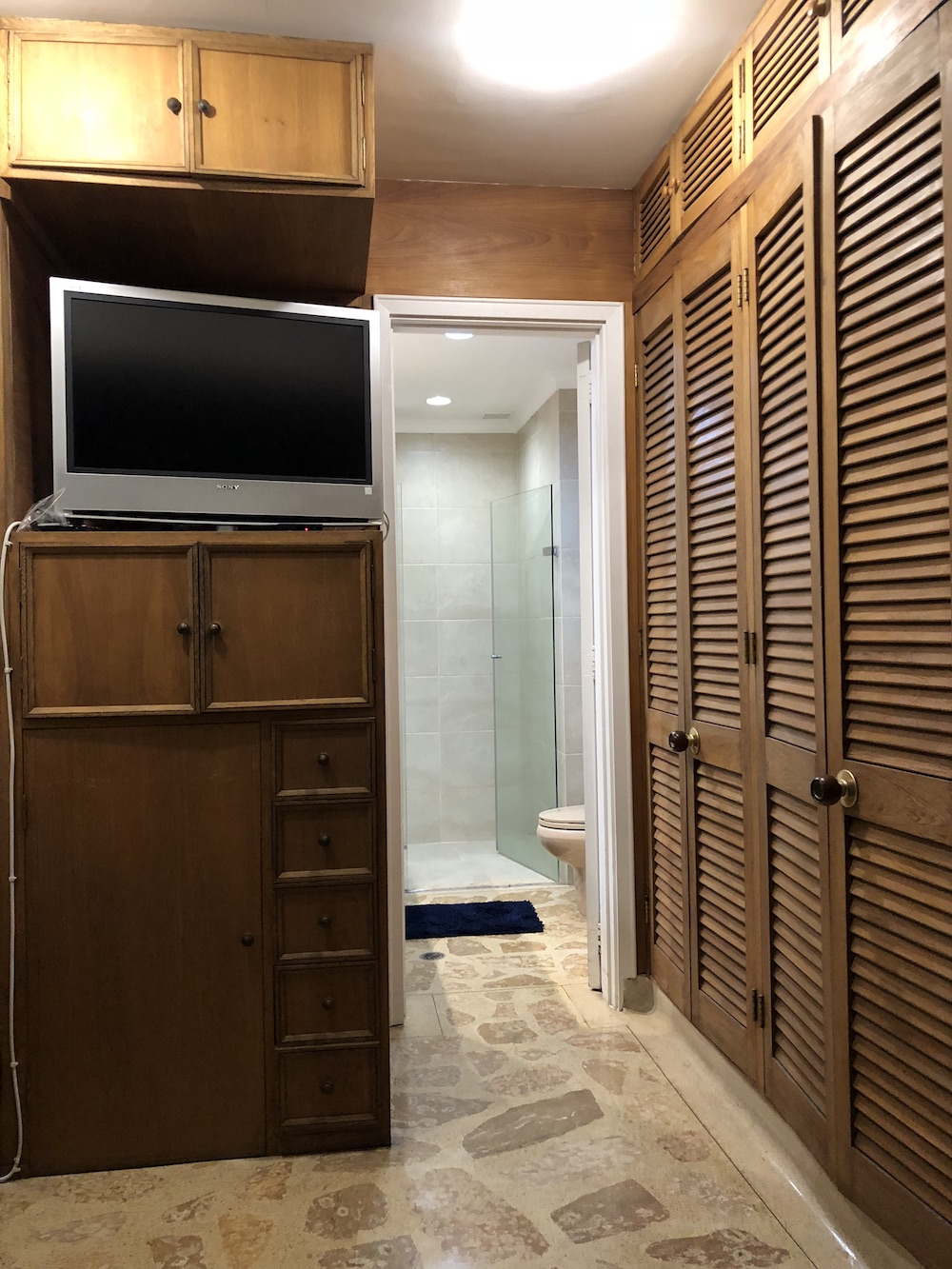 TV, master bathroom