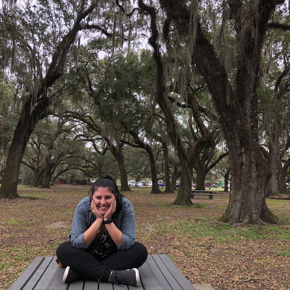 Oak trees at City Park