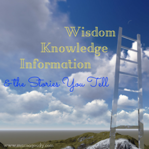 Wisdom Knowledge Information Stories