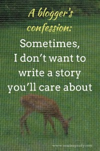 A blogger's confession: sometimes, I don't want to write a story you'll care about