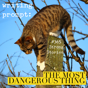 Writing Prompt : the most dangerous thing, #365StrongStories by Marisa Goudy