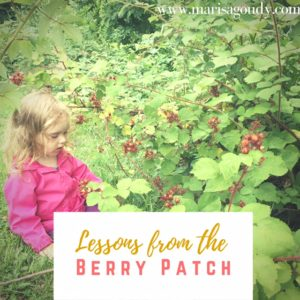 Lessons from the Berry Patch by Marisa Goudy #365StrongStories 144