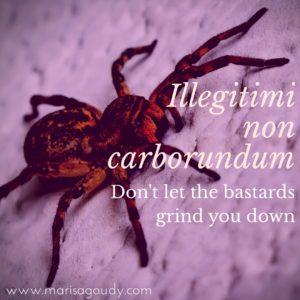 Illegitimi non carborundum (don't let the bastards grind you down) | Marisa Goudy | Storytelling and Writing Coach