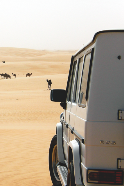 dessert-safari-excursion.jpg