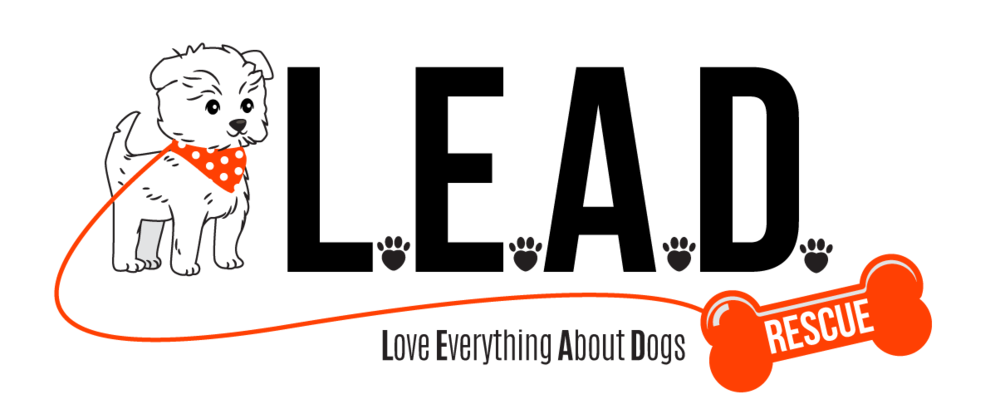 ALT_Logo_Horizontal.png