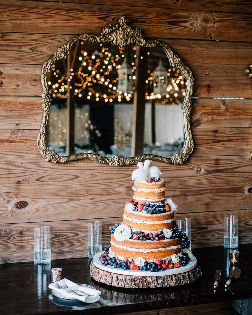 Naked Layered Wedding Cake Fruit Cross Creek Ranch Tampa Brandon Valrico Florida