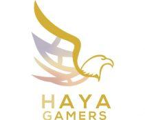 HAYAGamers