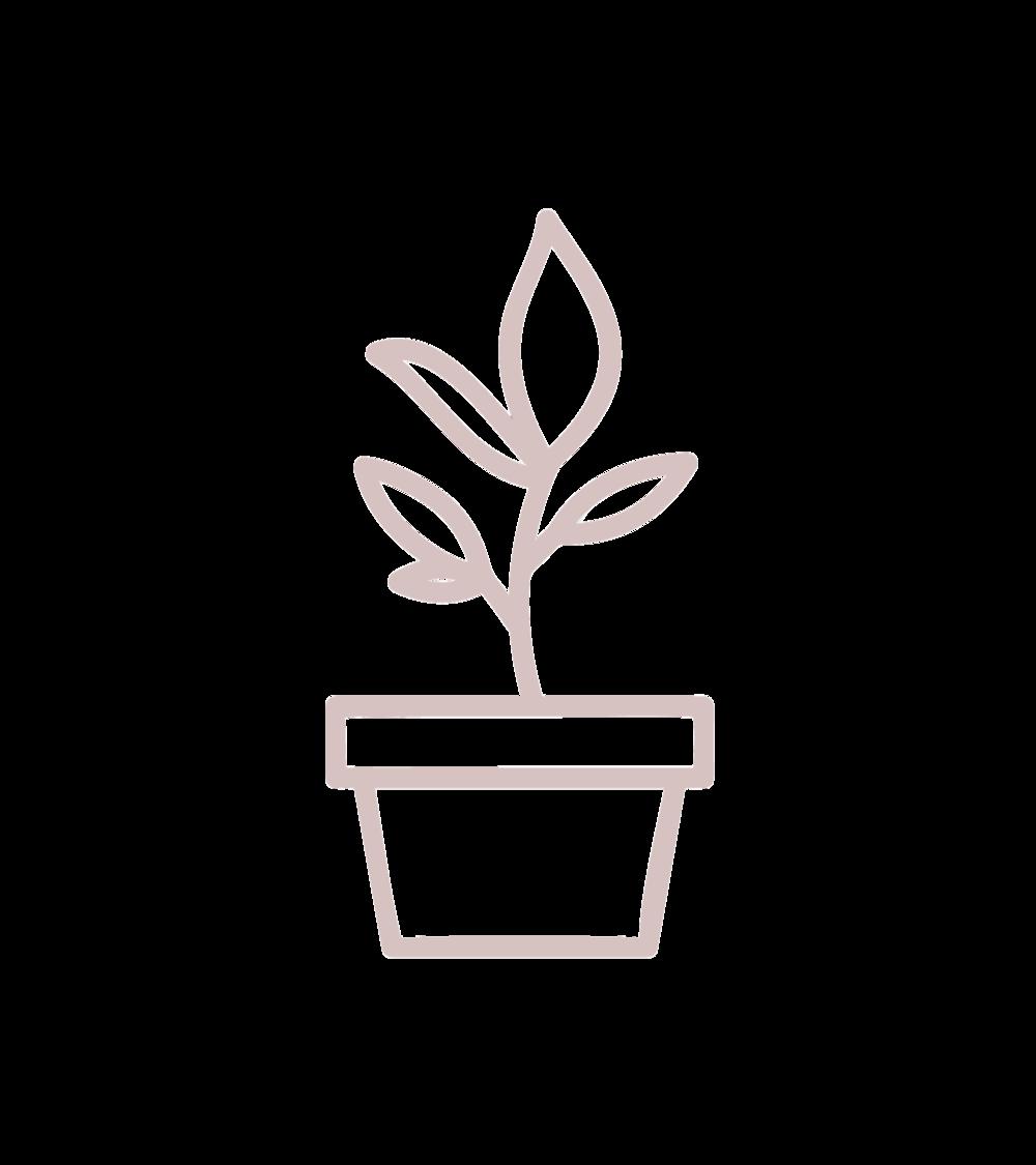 Plant-Pot.png