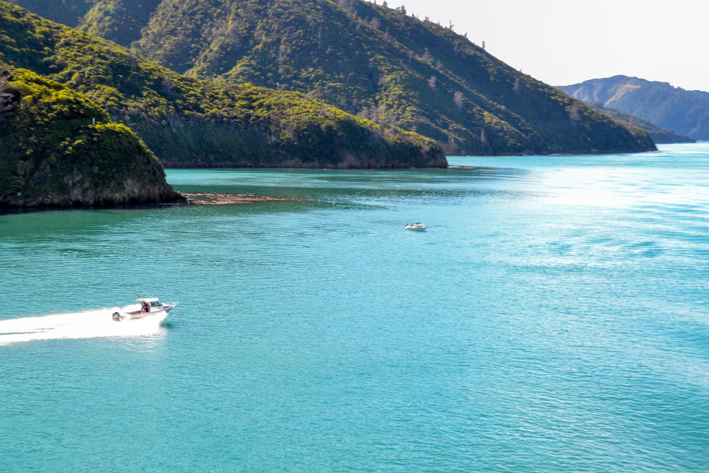 Crossing through Marlborough Sounds on the ferry between North and South Islands