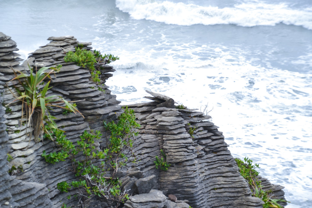 Pancake Rocks in Punakaiki New Zealand