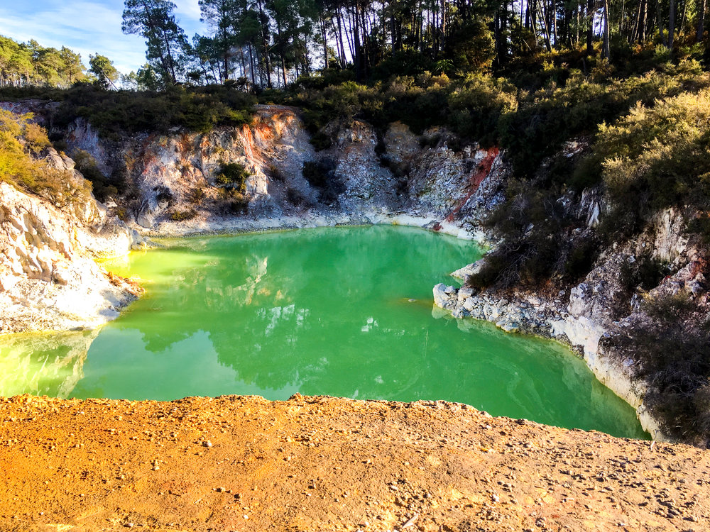 Wai-O-Tapu geothermal park in New Zealand