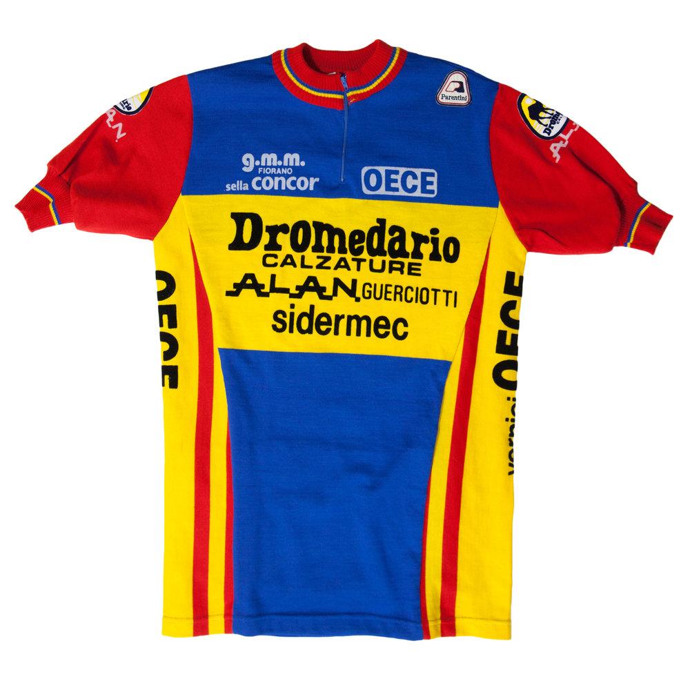 Dromedario_Front.jpg