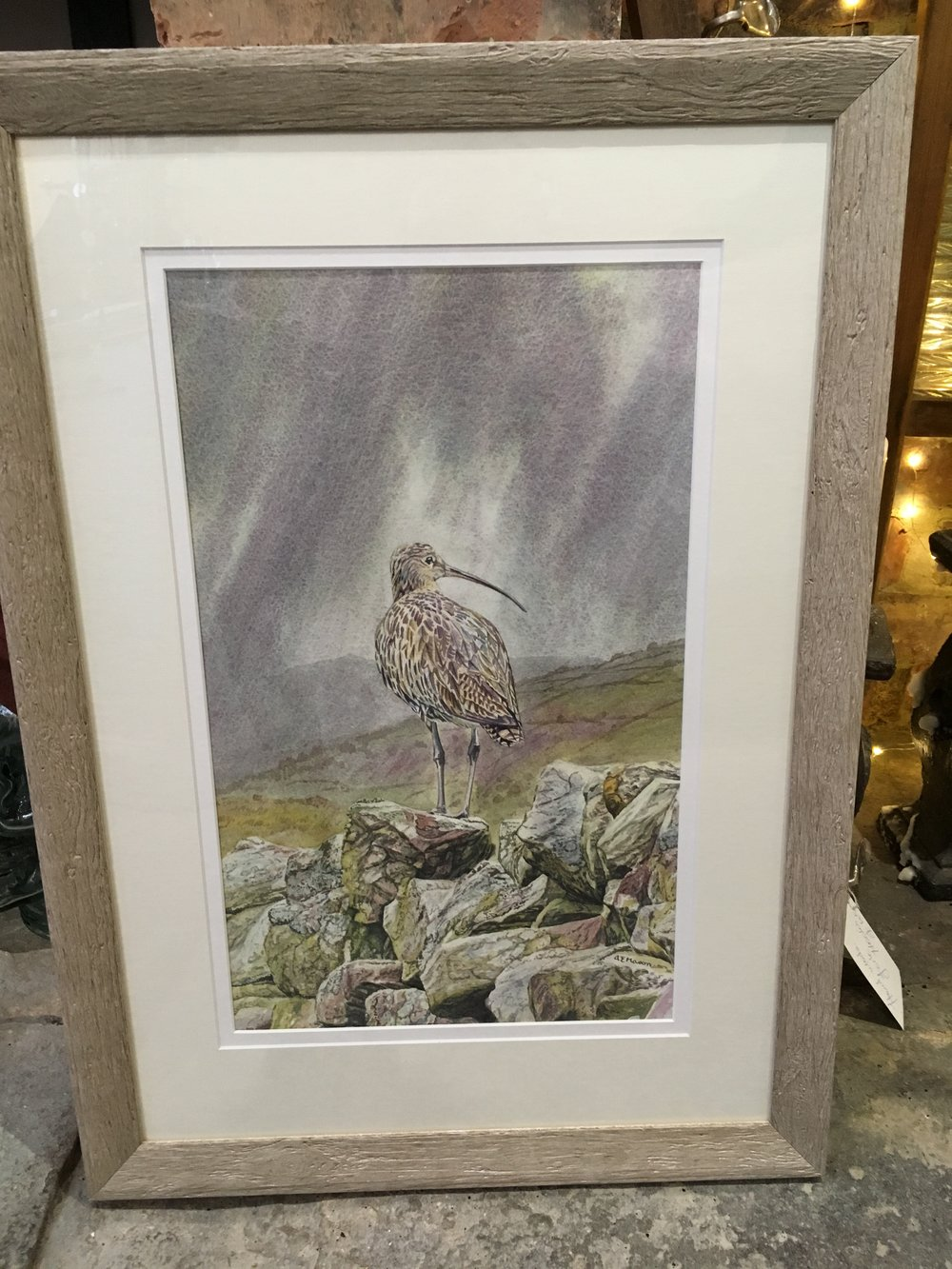 Curlew on a wall £ 375  original watercolour