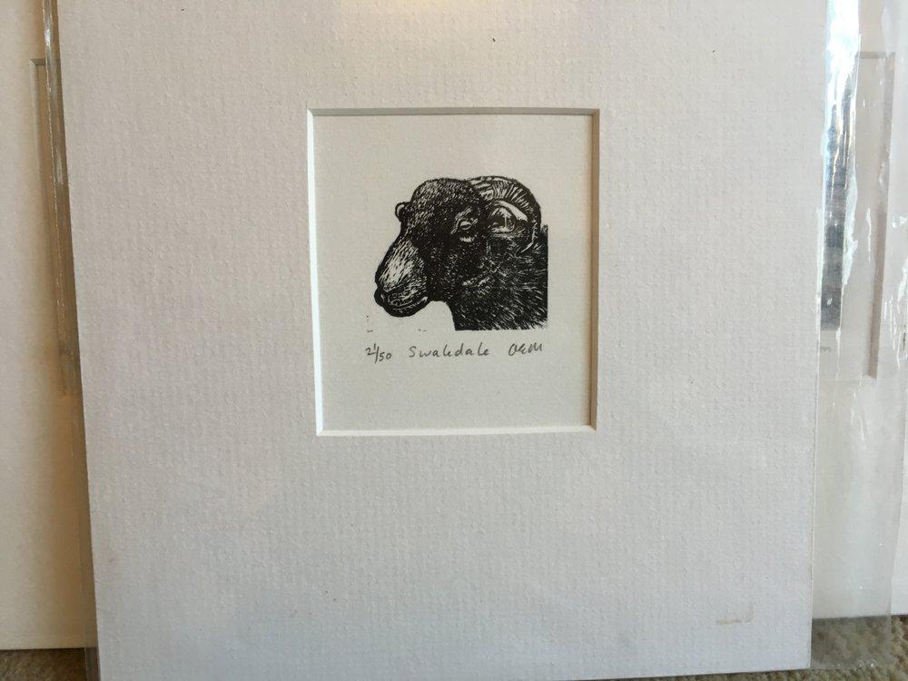 Engraving 'Swaledale Ram' 21/50 £23