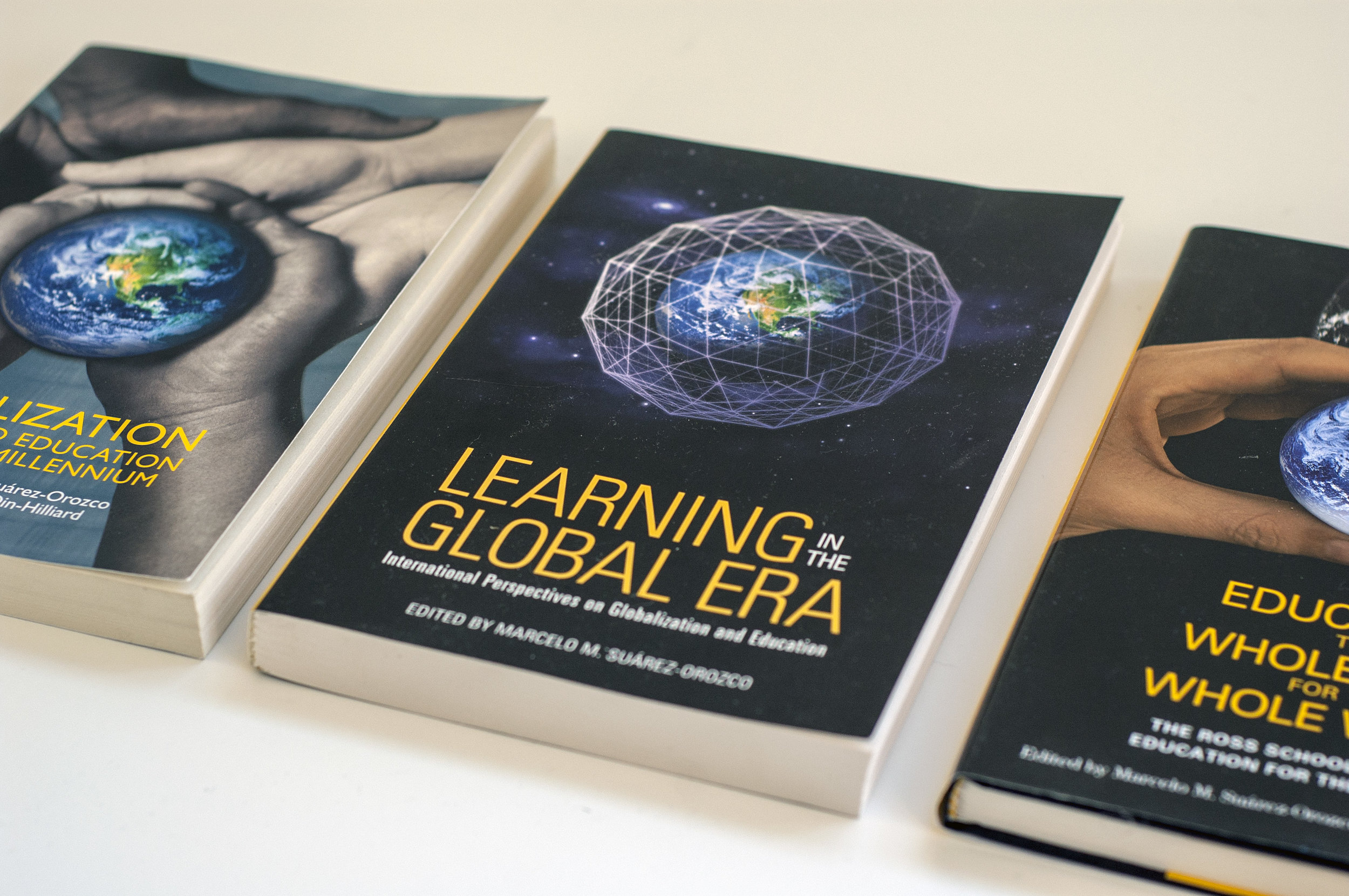globalization and education books julie iden