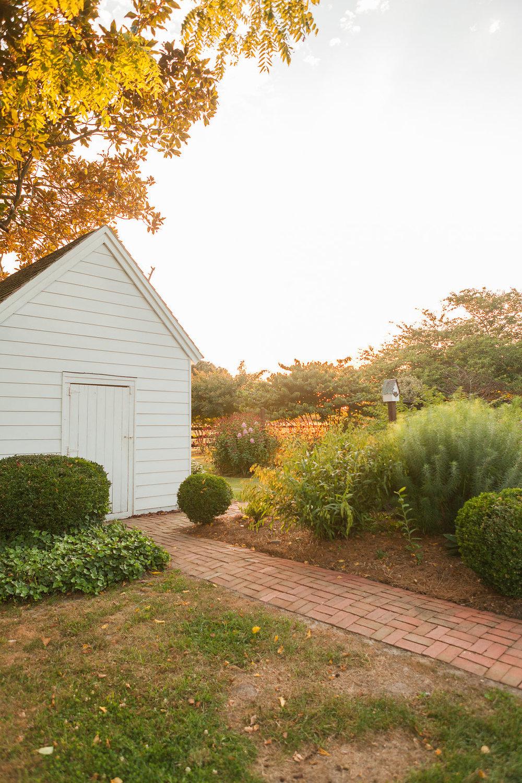Eastern Shore VA Farm (113).jpg