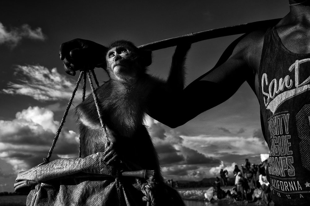 K M Asad_Bangladesh_Rohingya Exodus_17.jpg