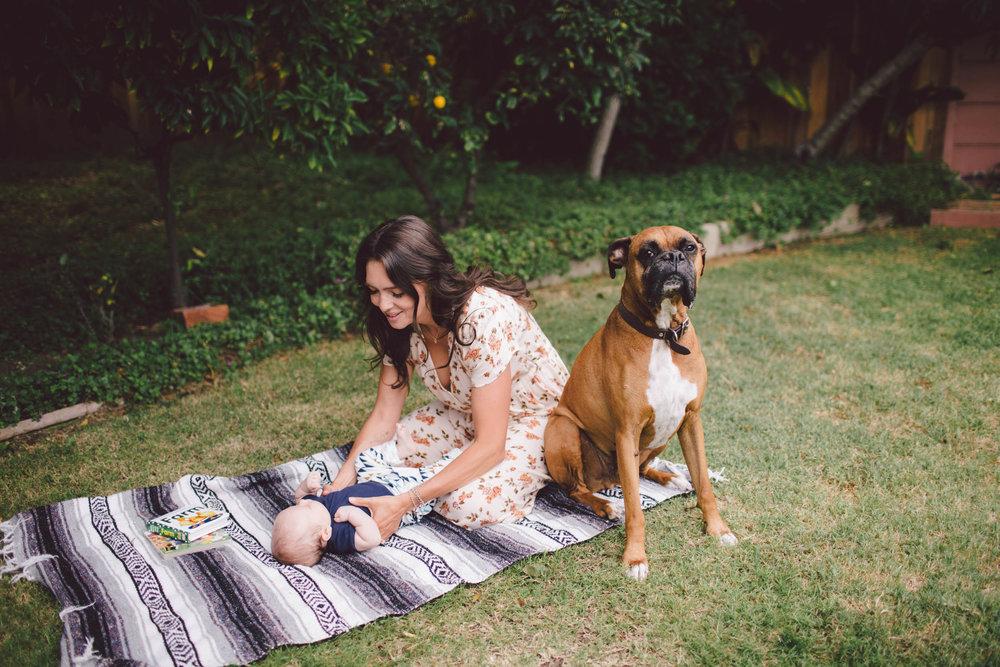 california los angeles lifestyle family photographer