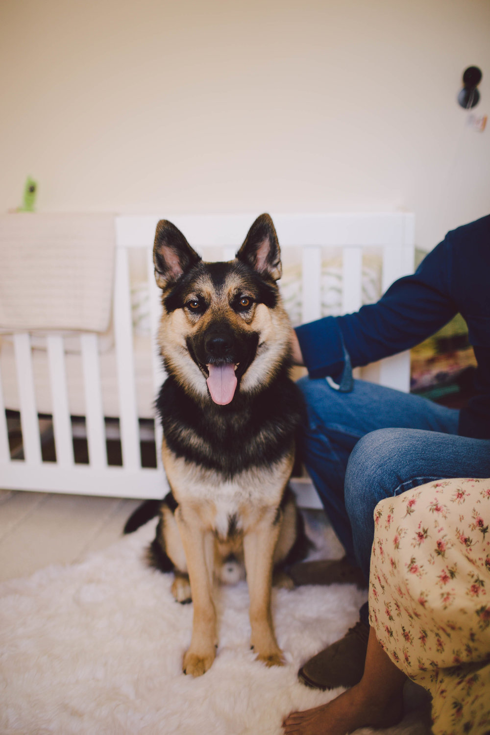 in home session-venice-california- family-lifestyle-photographer-boho-nursery-los angeles-dog
