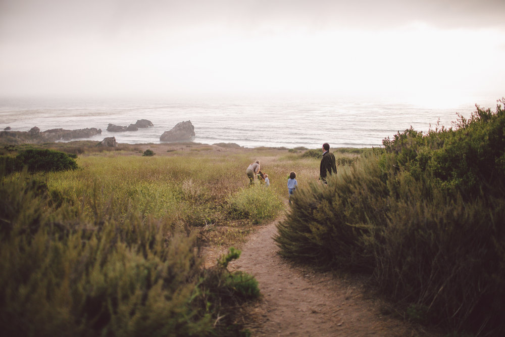 big sur boho family lifestyle photographer